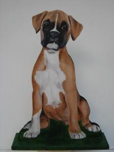 6 Puppy Boxer
