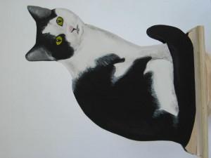 8 Black and white cat